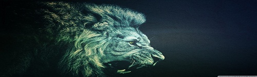 [تصویر:  lion_14-wallpaper-1440x900.jpg]